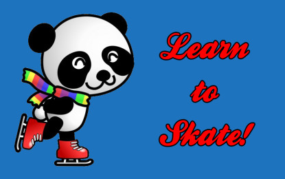 Learn to skate – 3 au 6 novembre 2015 – COMPLET